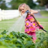 little girl watering garden with hose