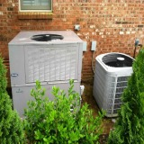 Landscape Around Air Conditioner